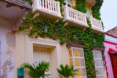 Balcones-Florecidos